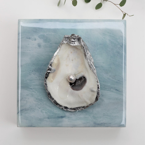 """No. 436   Oyster & Freshwater Pearl   6"""" x 6"""""""