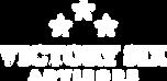 victorysixadvisors-logo-v1-white-800.png