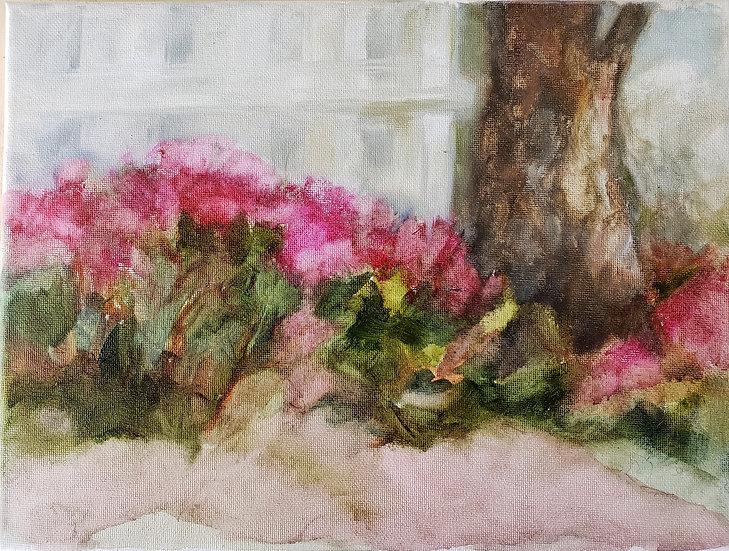 """Eden Gardens Spring   Oil   9"""" x 12""""   Unframed"""