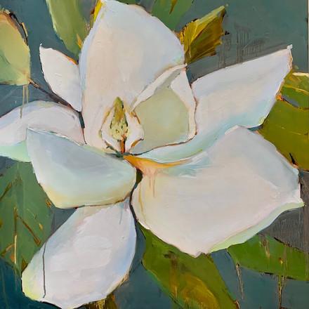 "Christmas Magnolia | Oil on panel | 30"" x 30"" | Unframed"