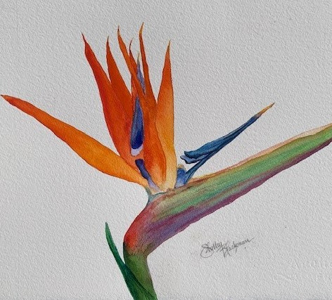 """Bird of Paradise 