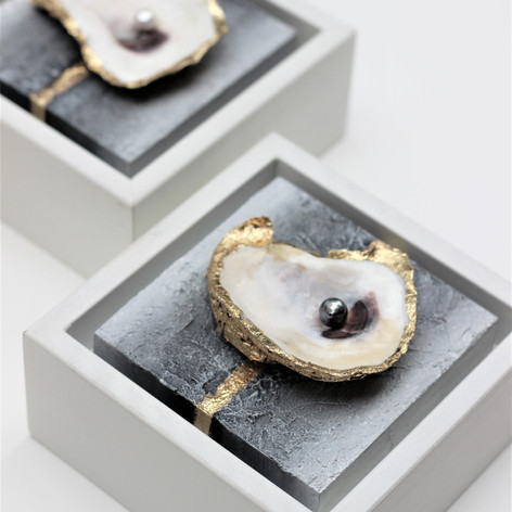"""Oyster Mini Set   Oysters & Freshwater Pearls   4"""" x 4"""" each"""