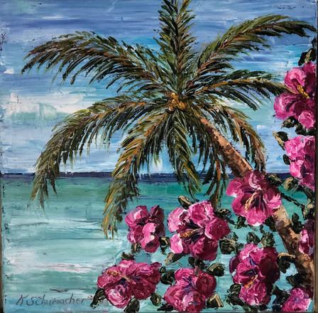 """Havana Beach   Oil   24"""" x 24""""   Framed"""