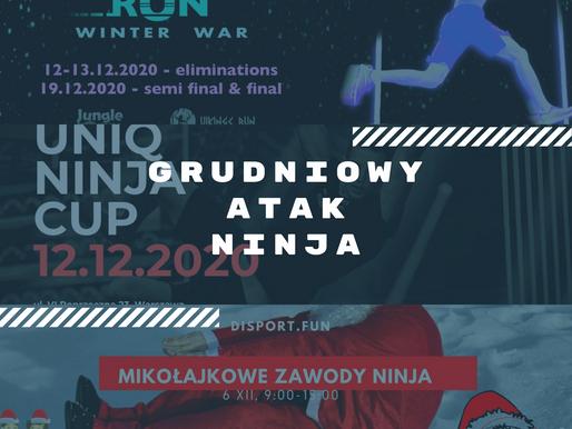 Grudniowy atak Ninja