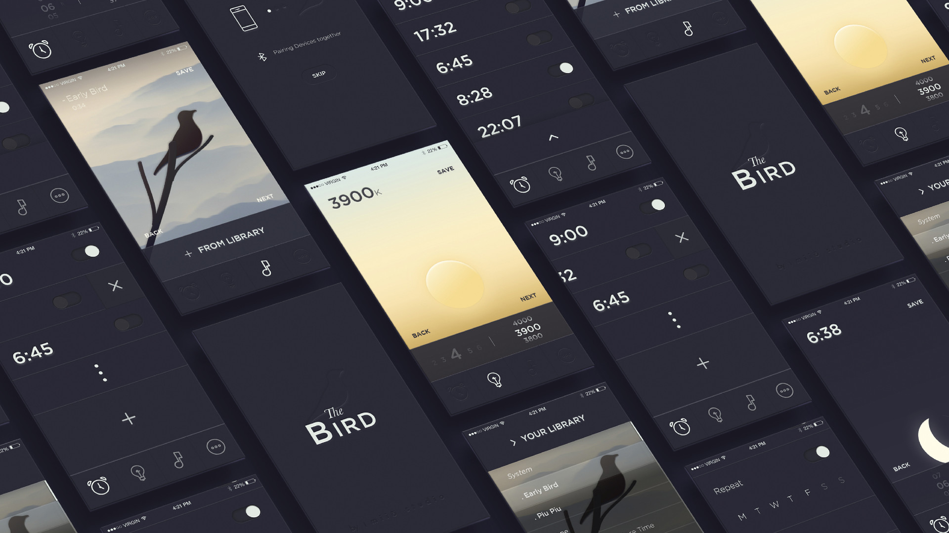 Portfolio_Project_TheBird-03.jpg