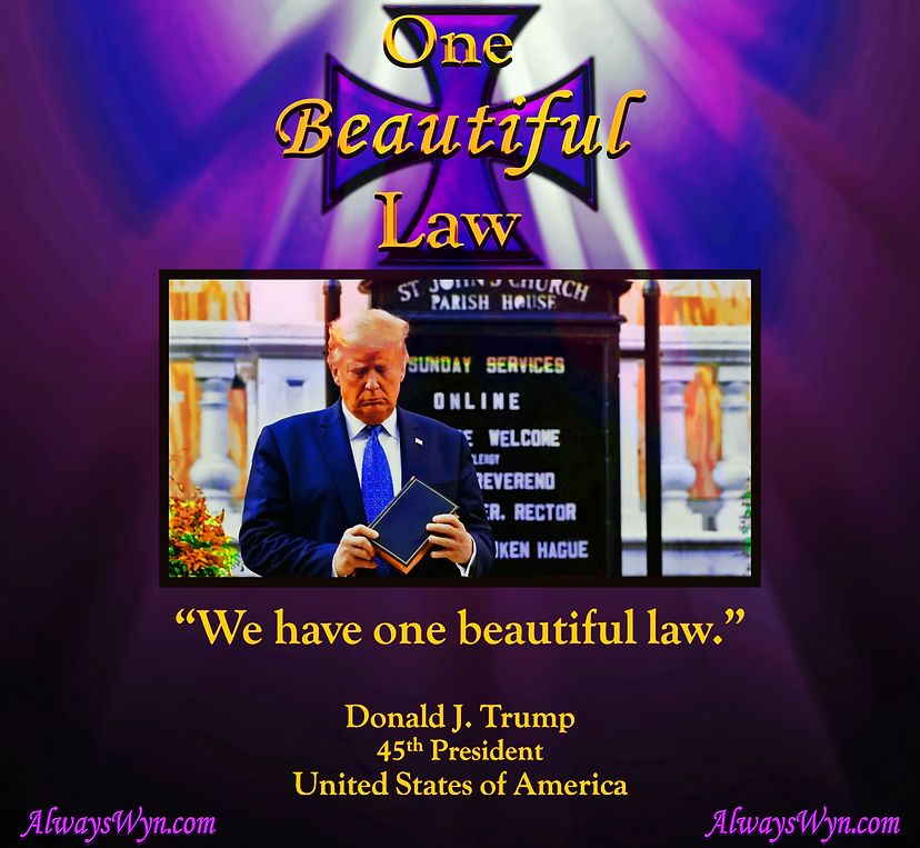 One Beautiful Law