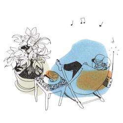 chaise plante et gateau