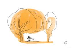 Un petit coin sous les arbres (2)