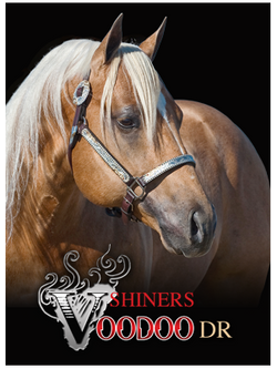 Shiners Voodoo Dr