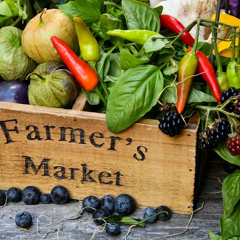 Walled Lake Farmers Market Volunteer June 30