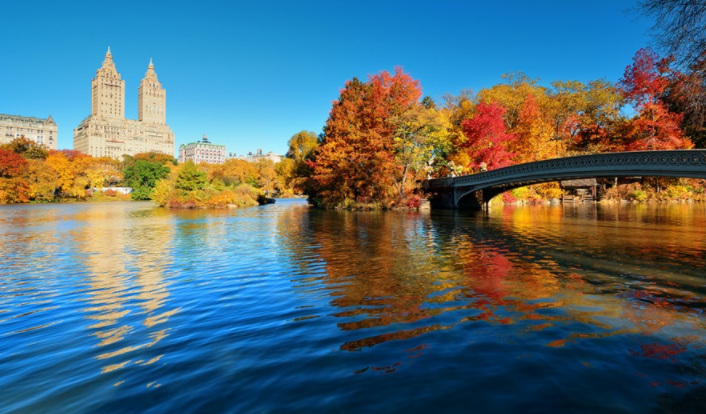 fall_in_NYC_1