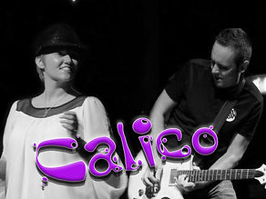 calico_3.jpg