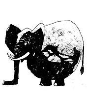 elefant-hochkant.jpg