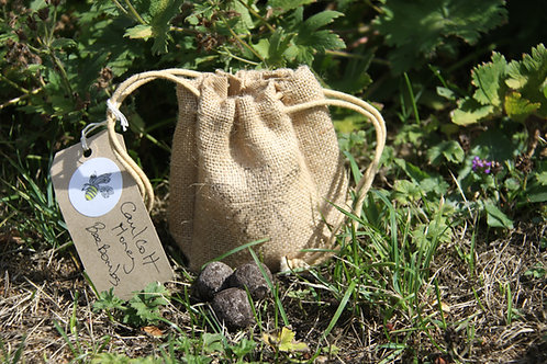 Bee & Butterfly Seed Bombs