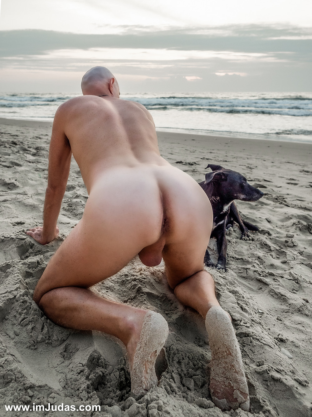 naked man male ass anus hole doggie beach