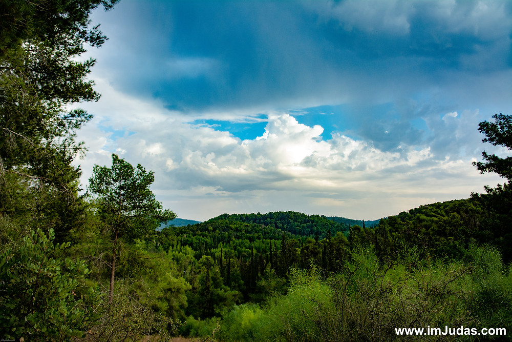 forest mountain clouds