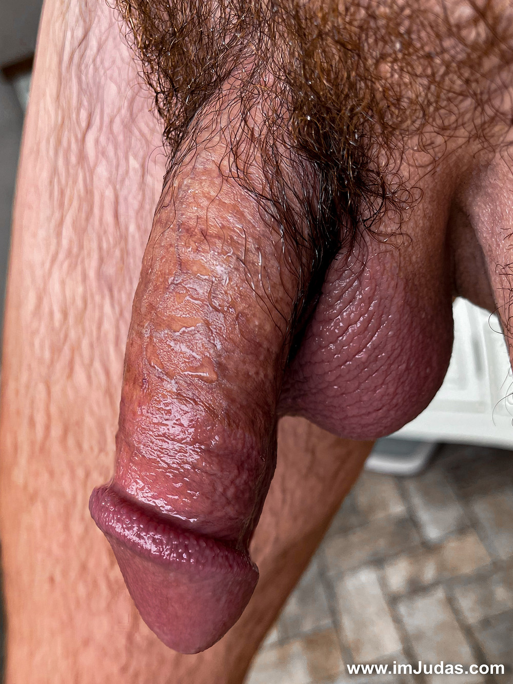 My pubic hair is a mixture of black, brown, orange, and red.