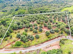 Oro Mango Property Lines.jpg