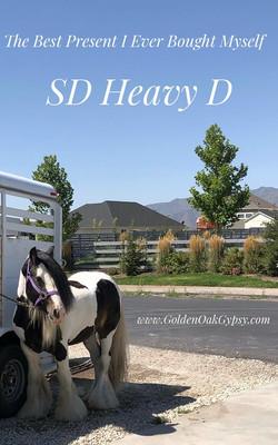 SD Heavy 'D'