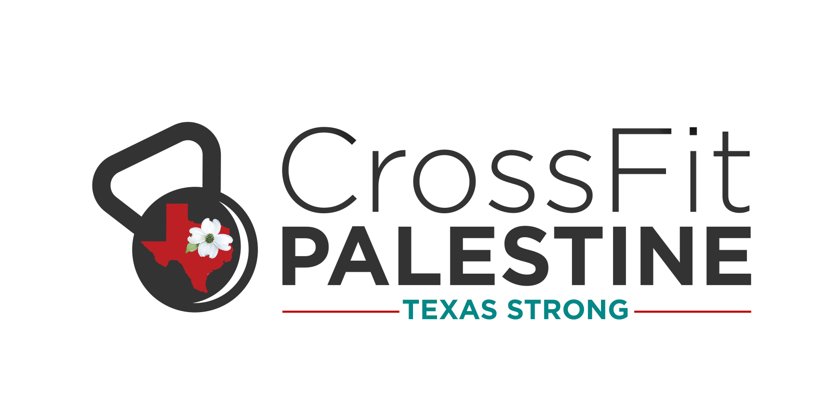 cf_palestine_logo.png