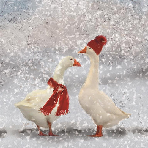 Winter Geese Christmas Card (pack of 10 cards)