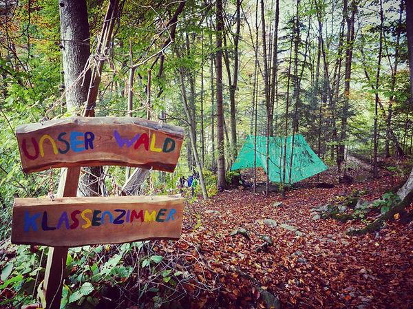 Waldschulzimmer | Rahel Schelb