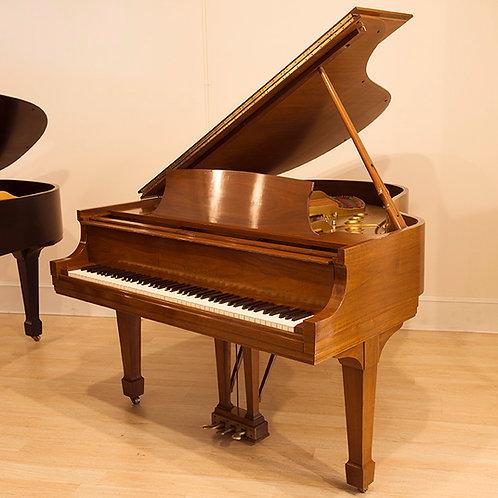 Steinway Grand Piano - Model M
