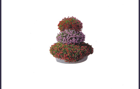 """""""Villes fleuries"""" acrylique sur papier"""