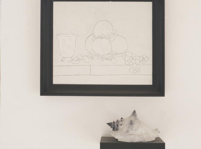 """Still life, nature morte et coquillage"" blanco, cadre, coquillage peint"