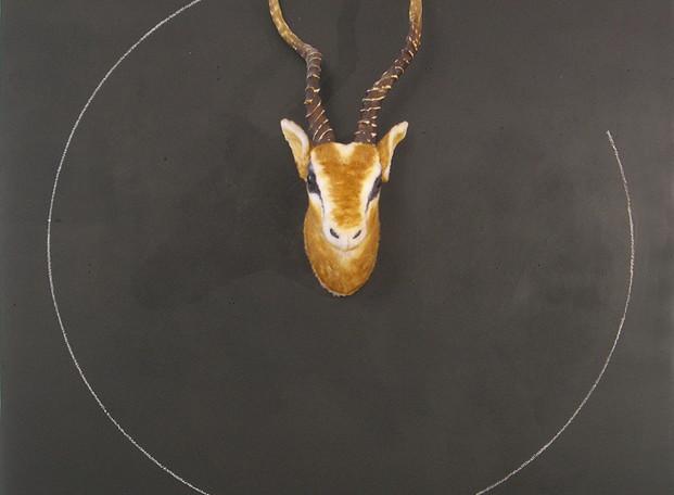 """""""Etant donné une antilope"""" trophée peluche, peinture tableau noir, craie"""