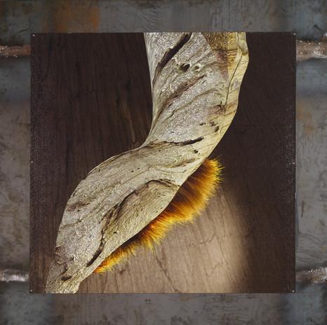 树结发滋 钢板印制 BurlHairWet-DigitalMetalPrints