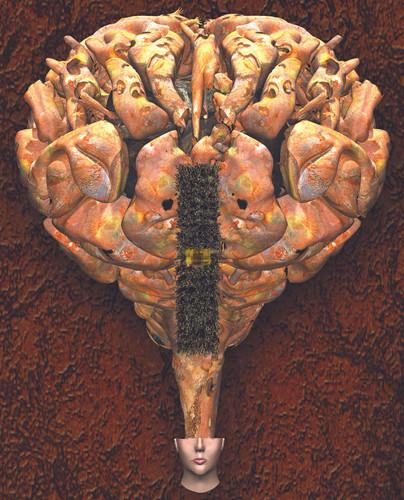 Big-Top-Brain-M2.jpg