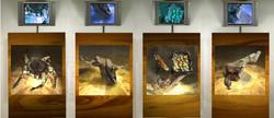 Animation Installation Series III /動畫裝置系列 III