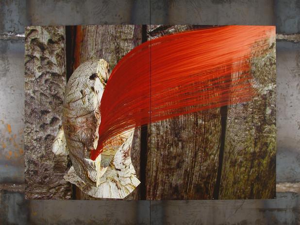 树结发红 钢板印制 BurlHairRed-DigitalMetalPrints