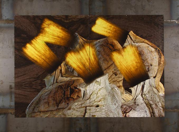 树结发鑫 钢板印制 BurlHairGold-DigitalMetalPrint