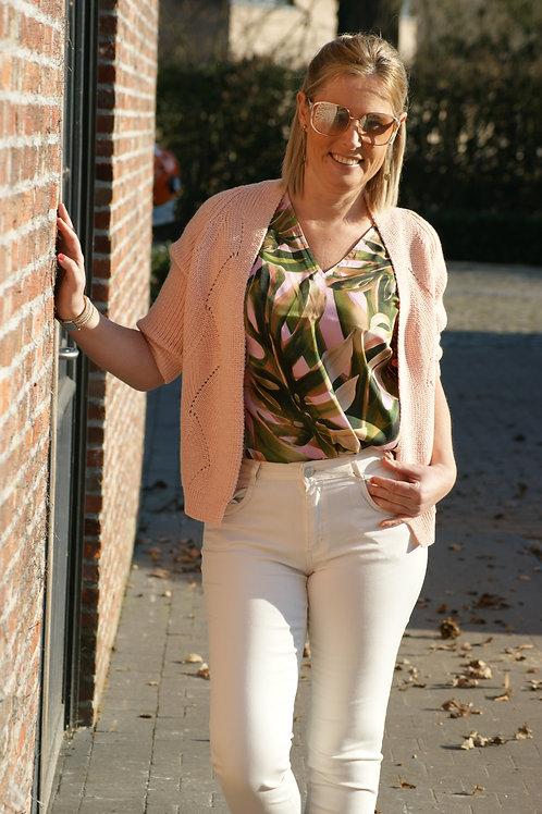 54362 Roze cardigan met lurex Dame Blanche