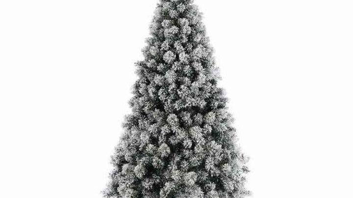 23/ Sapin Vancouver Enneigé NF 120cm