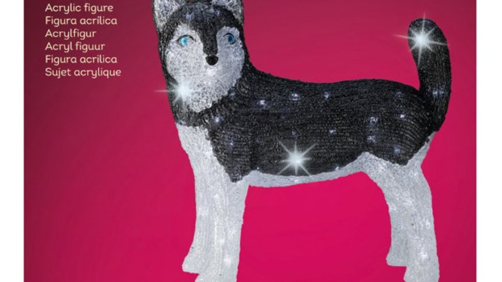 22/ LED HUSKY EXT Blanc Froid 49x26x49cm