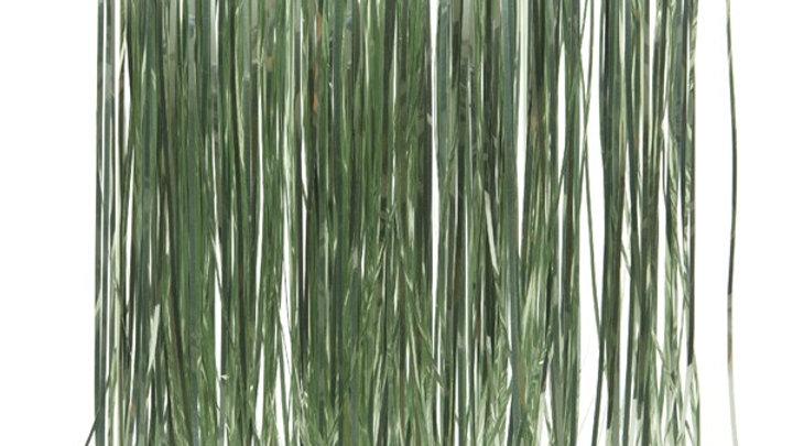 15/ Lametta Vinyle Vert Sauvage 50x40cm