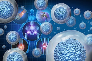 Cell Types-Applications_Stem Cells.jpg