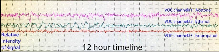 VOC_graph.jpg