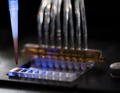 Thrombosis-platelet-adhesion-biochip.jpg