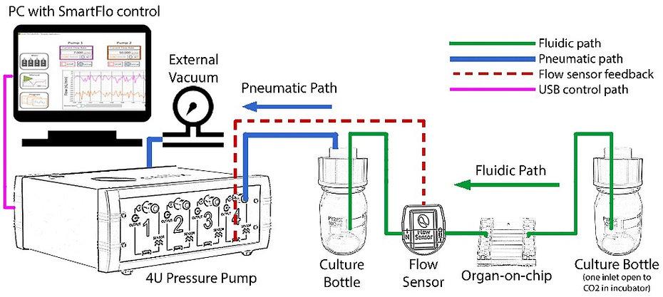 Organ-on-chip_4U pump1.jpg