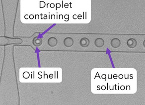6 Top Tips Resolving Challenges of Droplet Generation