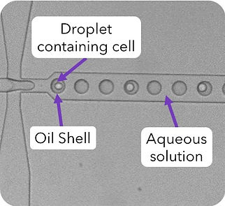 Droplet Generation_Cell or Particle_doub