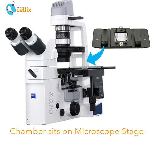 VenaFlux_Microscope and Micro-environmen