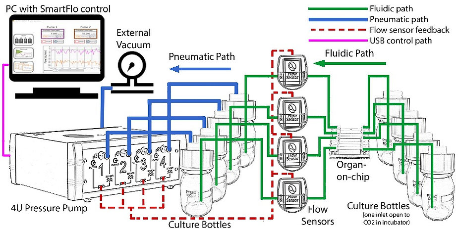 Organ-on-chip_4U pump2.jpg
