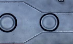 Microfluidic Solutions_Droplet Generatio