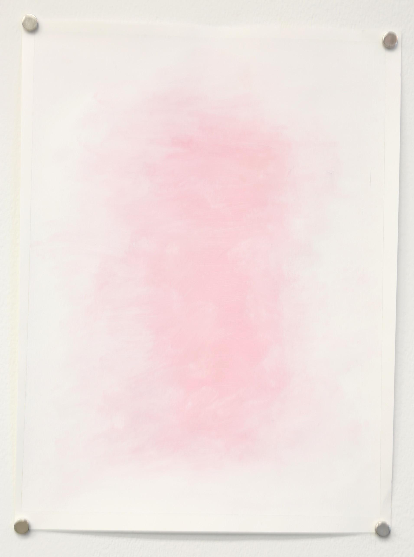 Pink Field 1
