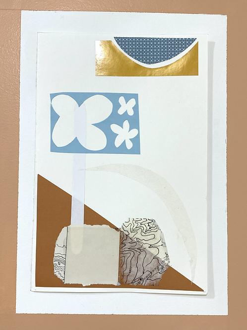 Collage 6 -Weber